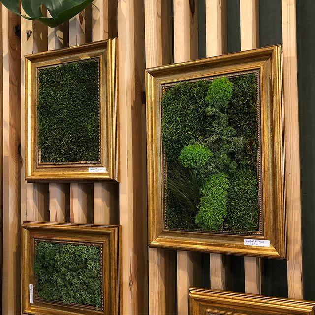 Stabilised moss frames first delivery for @popandshopbrussels #urbanjungle #gogreen #frame #greendeco #greendesign #moss