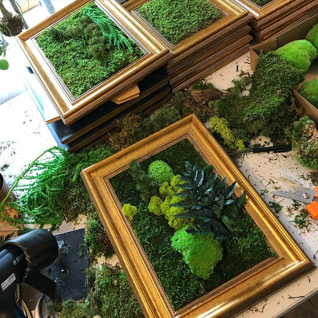 Producing moss frames today #gogreen #moss #mossart #greendeco #homemade